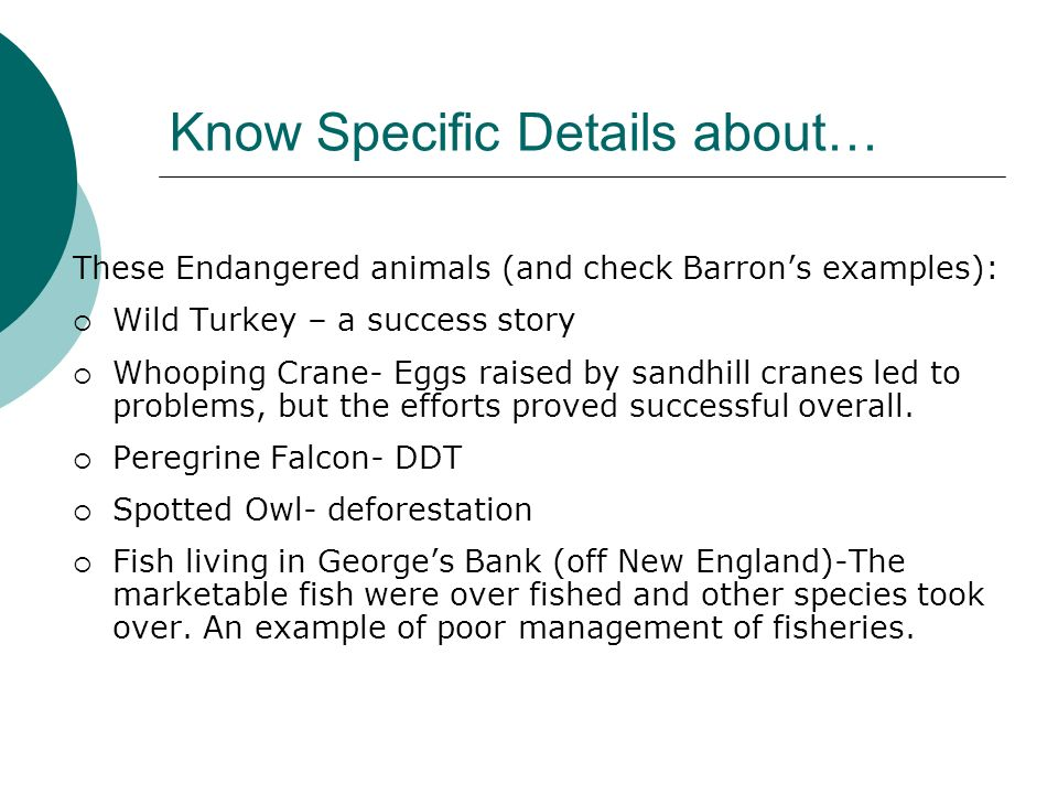 Know Specific Details about… These Endangered animals (and check Barrons examples): Wild Turkey – a success story Whooping Crane- Eggs raised by sandh
