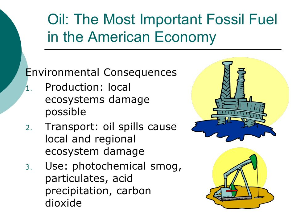 Oil: The Most Important Fossil Fuel in the American Economy Environmental Consequences 1. Production: local ecosystems damage possible 2. Transport: o