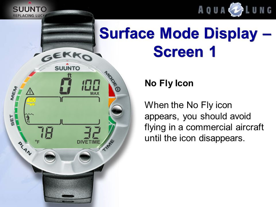 Surface Mode Display – Screen 1 No Fly Icon When the No Fly icon appears, you should avoid flying in a commercial aircraft until the icon disappears.