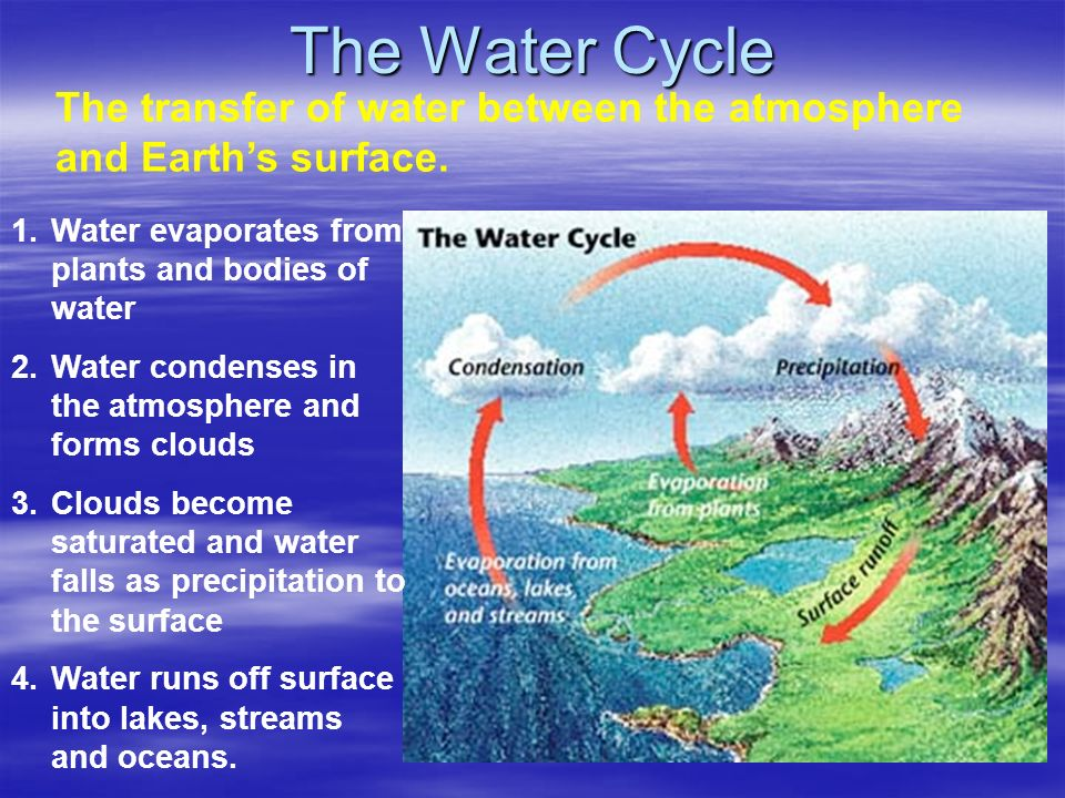 The Water Cycle The transfer of water between the atmosphere and Earths surface.