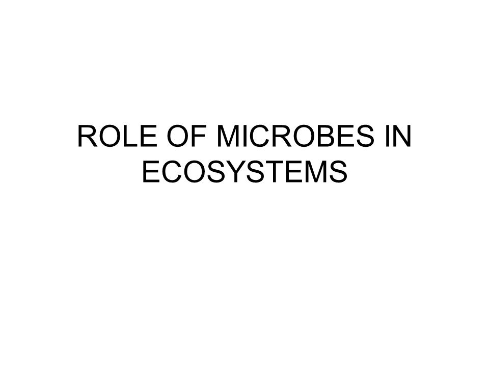 ROLE OF MICROBES IN ECOSYSTEMS