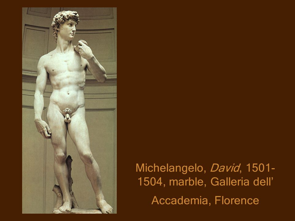 Michelangelo, David, 1501- 1504, marble, Galleria dell Accademia, Florence