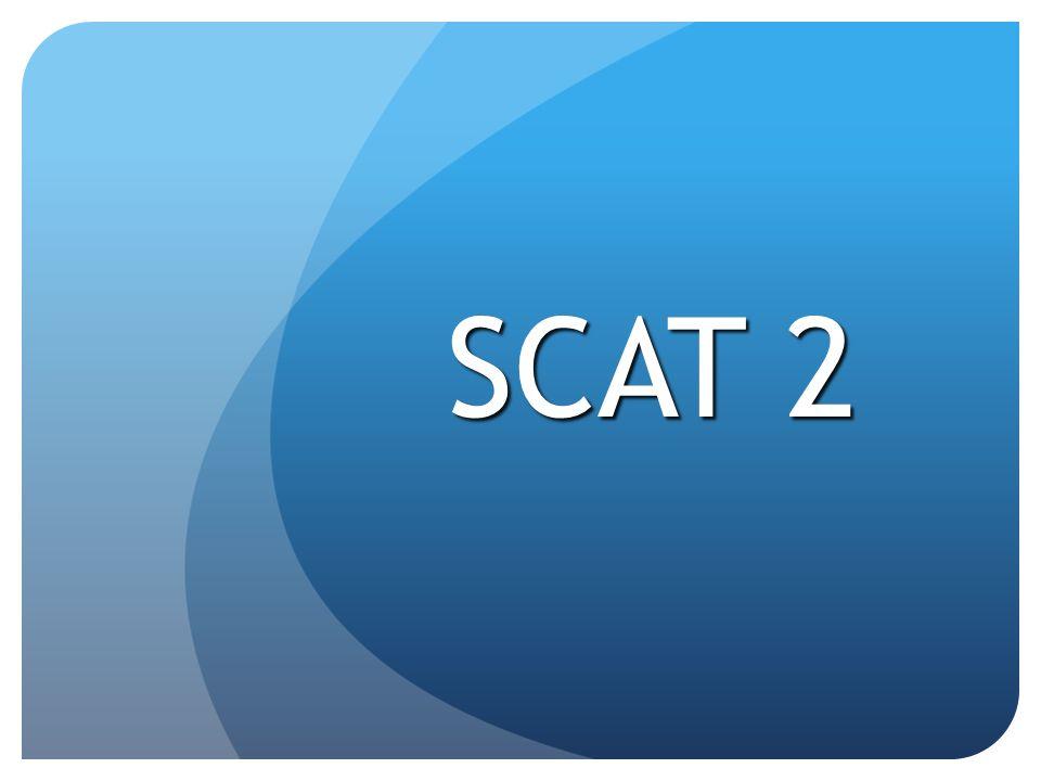 SCAT 2