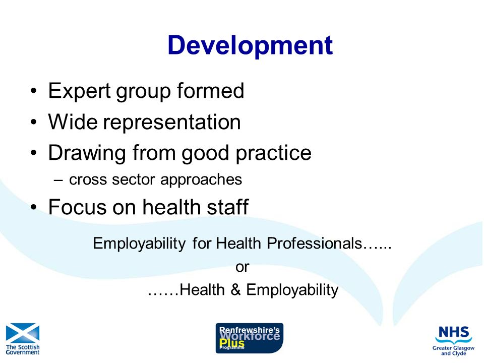 Development Expert group formed Wide representation Drawing from good practice –cross sector approaches Focus on health staff Employability for Health Professionals…...