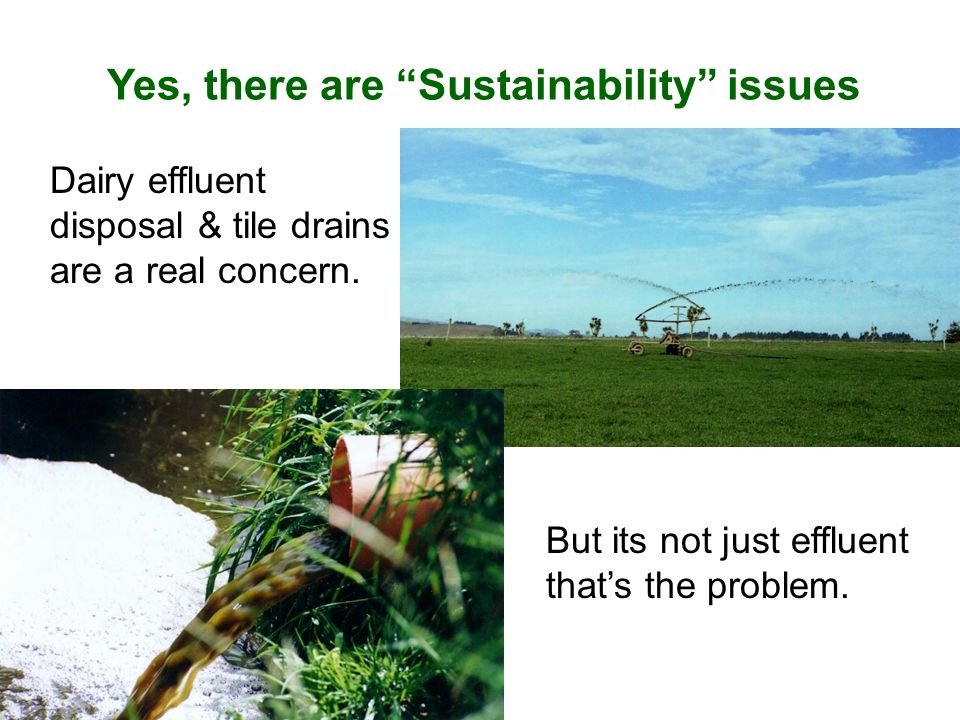 Yes, there are Sustainability issues But its not just effluent thats the problem. Dairy effluent disposal & tile drains are a real concern.