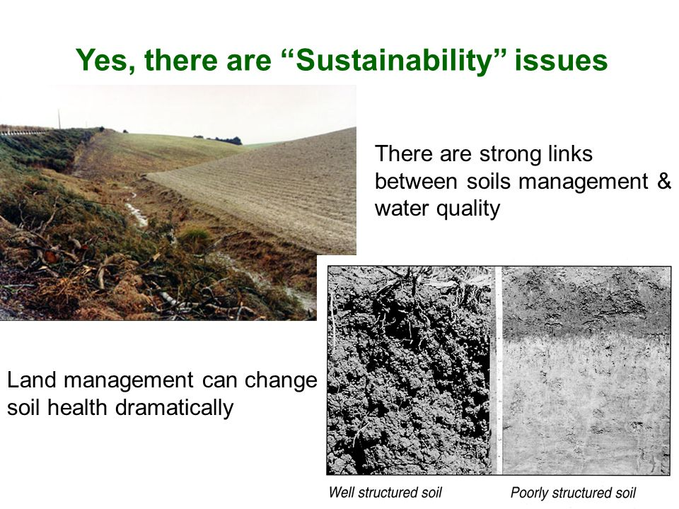 Yes, there are Sustainability issues There are strong links between soils management & water quality Land management can change soil health dramatical