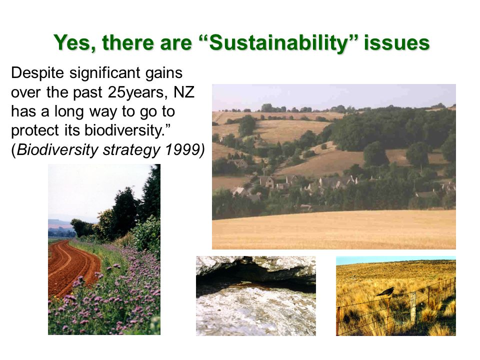Yes, there are Sustainability issues Despite significant gains over the past 25years, NZ has a long way to go to protect its biodiversity. (Biodiversi