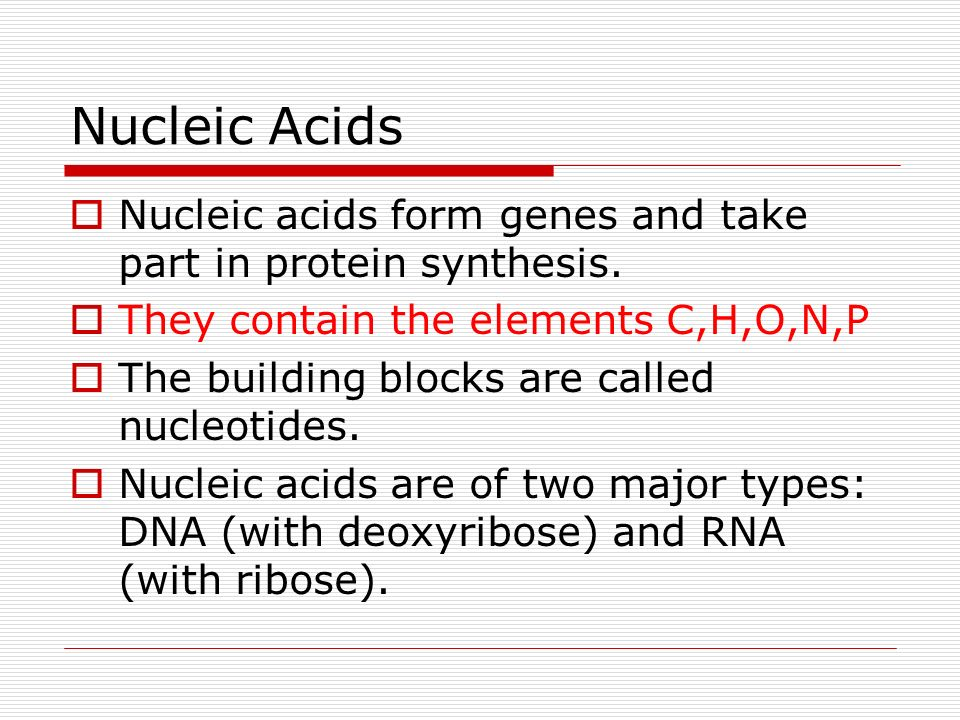Nucleic Acids Nucleic acids form genes and take part in protein synthesis. They contain the elements C,H,O,N,P The building blocks are called nucleoti