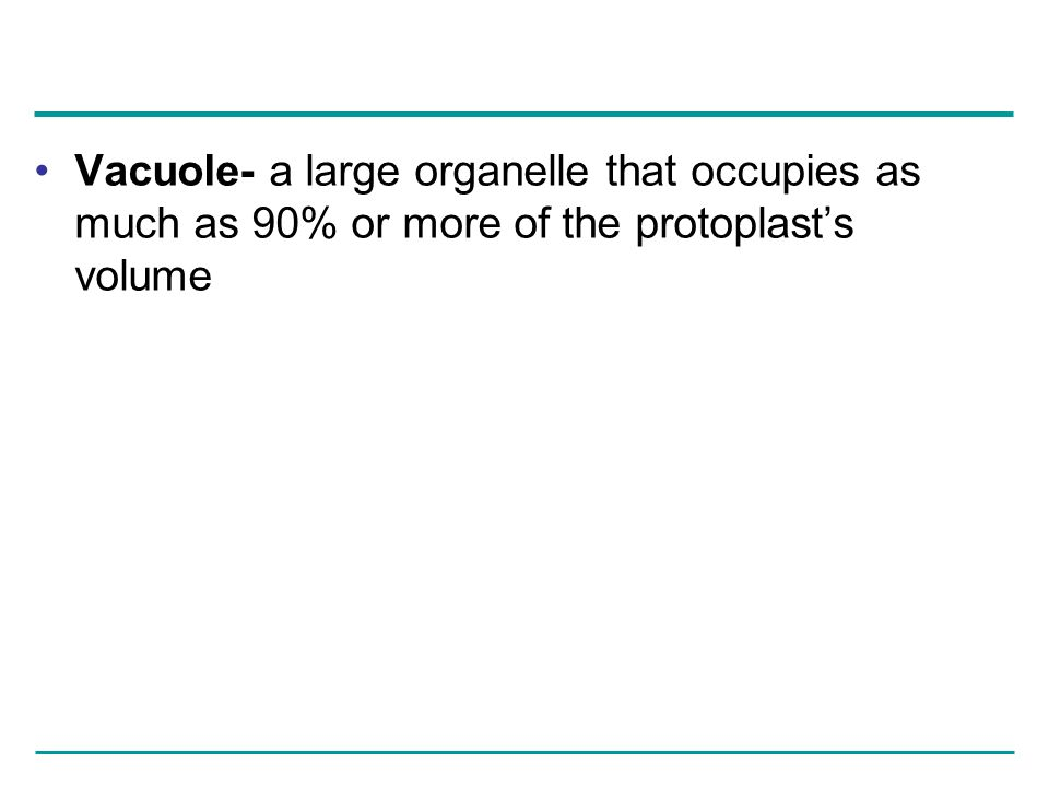 Vacuole- a large organelle that occupies as much as 90% or more of the protoplasts volume