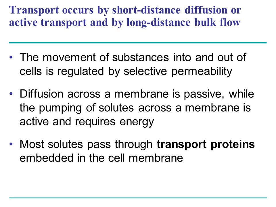 Transport occurs by short-distance diffusion or active transport and by long-distance bulk flow The movement of substances into and out of cells is re