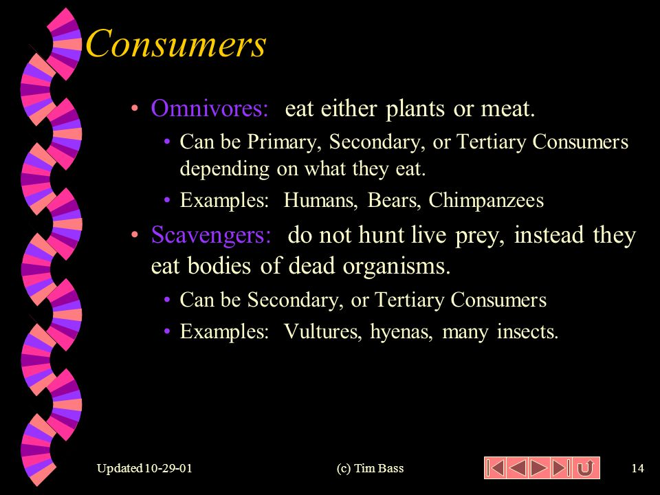 Updated (c) Tim Bass13 Consumers w Herbivores: only eat plants.