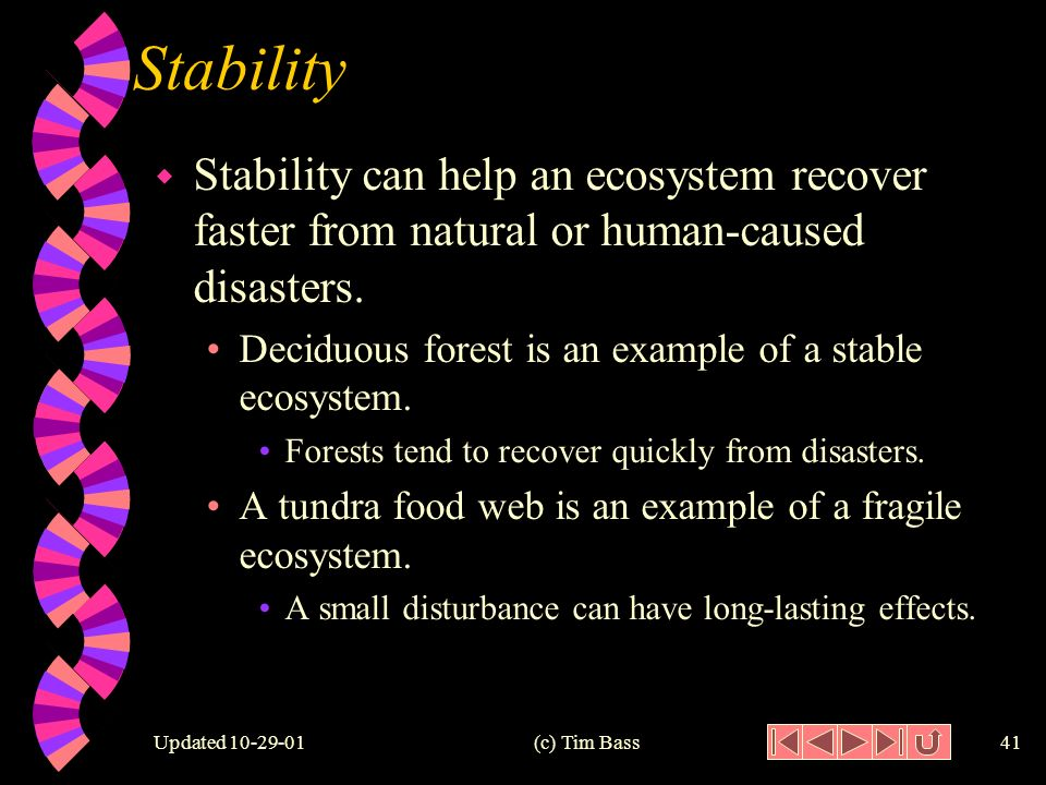 Updated (c) Tim Bass40 Relative Stability Low Stability High Stability Trophic Levels