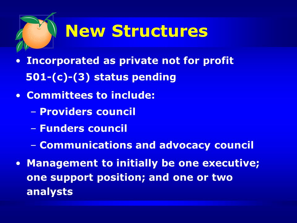 New Structures Incorporated as private not for profit 501-(c)-(3) status pending Committees to include: –Providers council –Funders council –Communications and advocacy council Management to initially be one executive; one support position; and one or two analysts