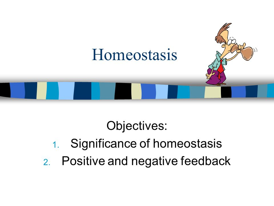Homeostasis Objectives: 1. Significance of homeostasis 2. Positive and negative feedback