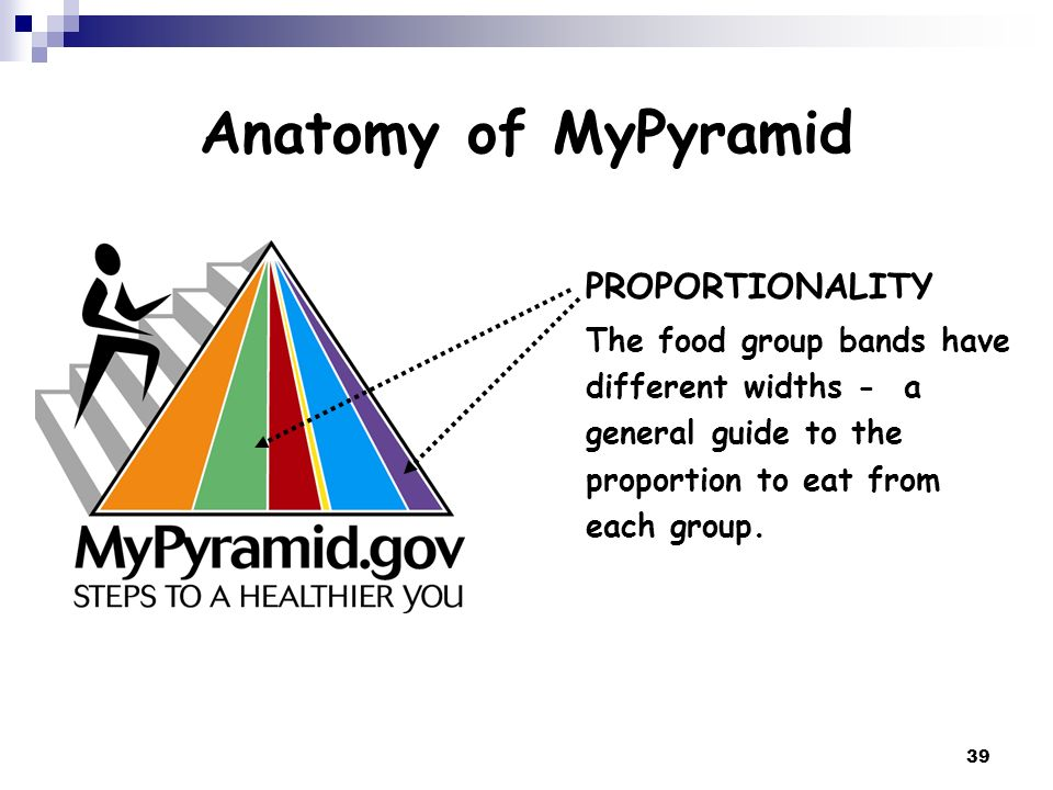 39 Anatomy of MyPyramid PROPORTIONALITY The food group bands have different widths - a general guide to the proportion to eat from each group.