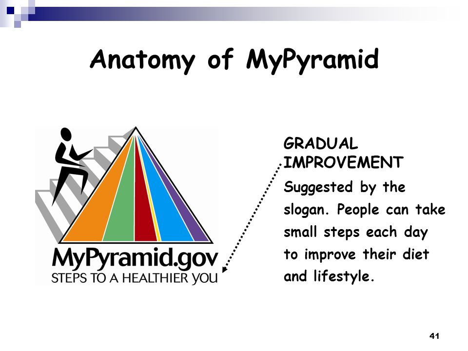 41 Anatomy of MyPyramid GRADUAL IMPROVEMENT Suggested by the slogan. People can take small steps each day to improve their diet and lifestyle.