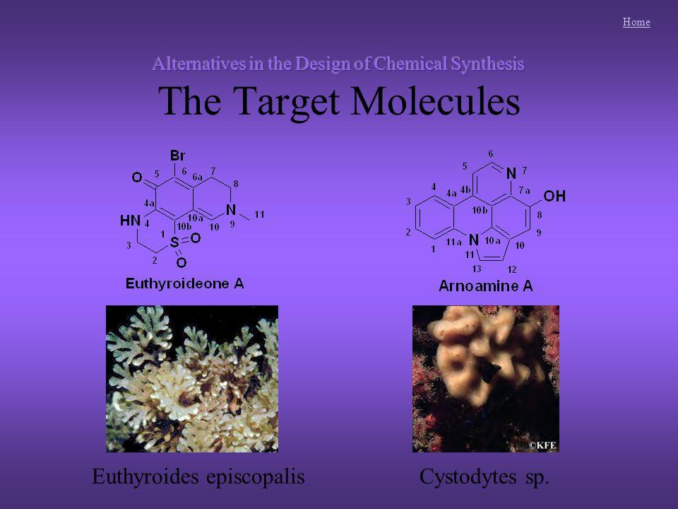 Home Dopamine-derived pyridoacridines