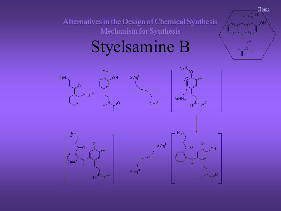 Home Styelsamine D was designated the primary target since it appears to be central to all dopamine-derived pyridoacridinesStyelsamine D was designated the primary target since it appears to be central to all dopamine-derived pyridoacridines Styelsamine D