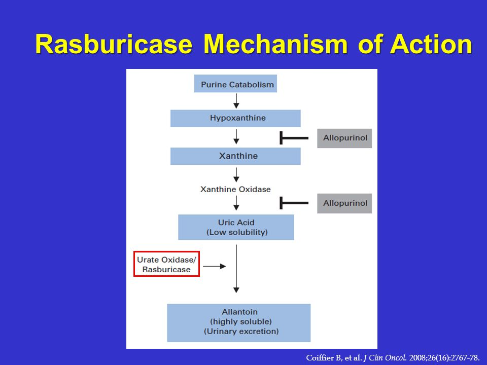 Rasburicase Mechanism of Action Coiffier B, et al. J Clin Oncol. 2008;26(16):2767-78.