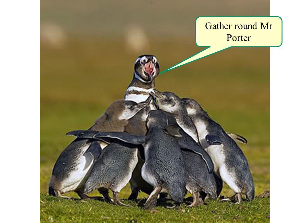 Gather round Mr Porter