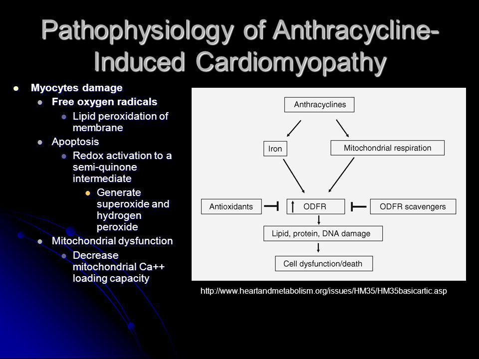 RCT: Protective effects of carvedilol against anthracycline-induced cardiomyopathy Patient diagnosed with malignancy and planned AT therapy with doxorubicin or epirubicin Patient diagnosed with malignancy and planned AT therapy with doxorubicin or epirubicin Exclusion criteria: Exclusion criteria: Previous chemotherapy or radiotherapy Previous chemotherapy or radiotherapy Presence of CHF symptoms or established CMP Presence of CHF symptoms or established CMP Hx of CAD Hx of CAD Presence of moderate to severe mitral or aortic valve disease Presence of moderate to severe mitral or aortic valve disease Any CI to carvedilol Any CI to carvedilol Bundle branch block Bundle branch block Thyroid function disorder Thyroid function disorder Other comorbid disease Other comorbid disease Taking other drugs that affect cardiac function Taking other drugs that affect cardiac function