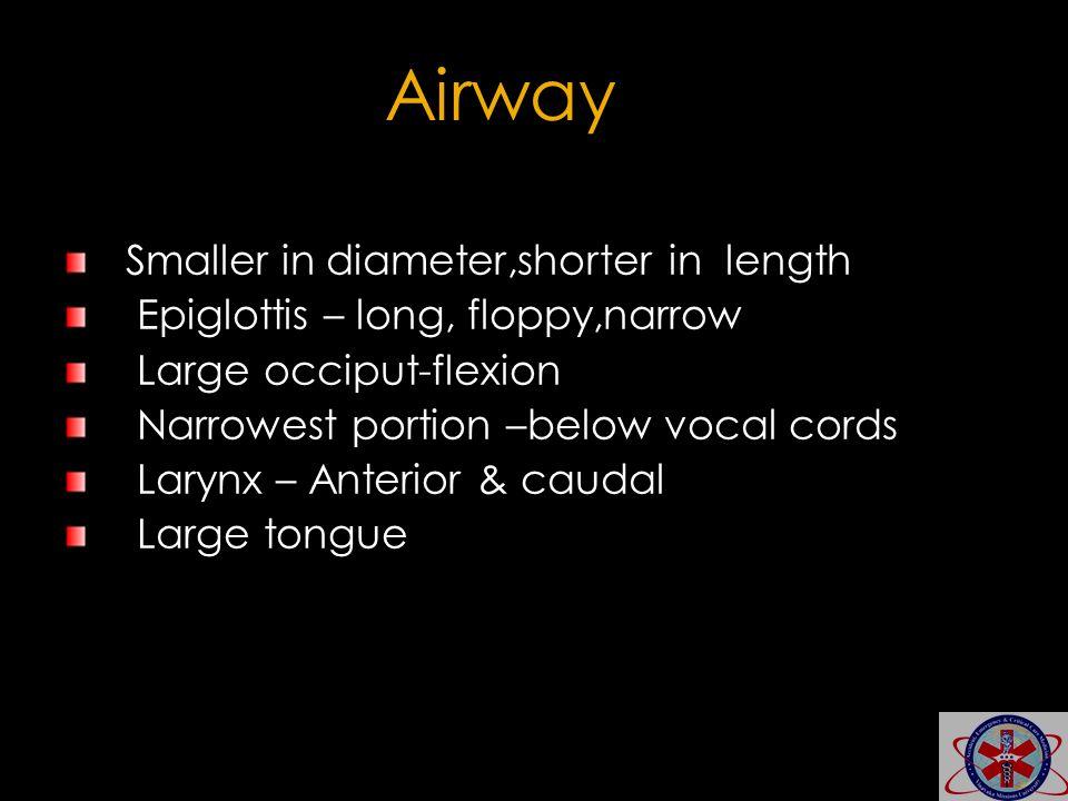 Smaller in diameter,shorter in length Epiglottis – long, floppy,narrow Large occiput-flexion Narrowest portion –below vocal cords Larynx – Anterior &