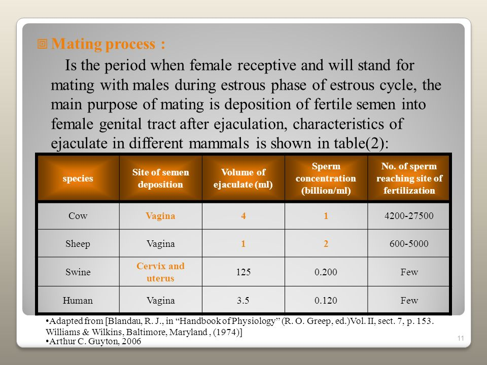 11 Mating process : Is the period when female receptive and will stand for mating with males during estrous phase of estrous cycle, the main purpose o