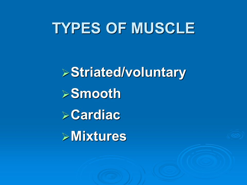 TYPES OF MUSCLE Striated/voluntary Striated/voluntary Smooth Smooth Cardiac Cardiac Mixtures Mixtures
