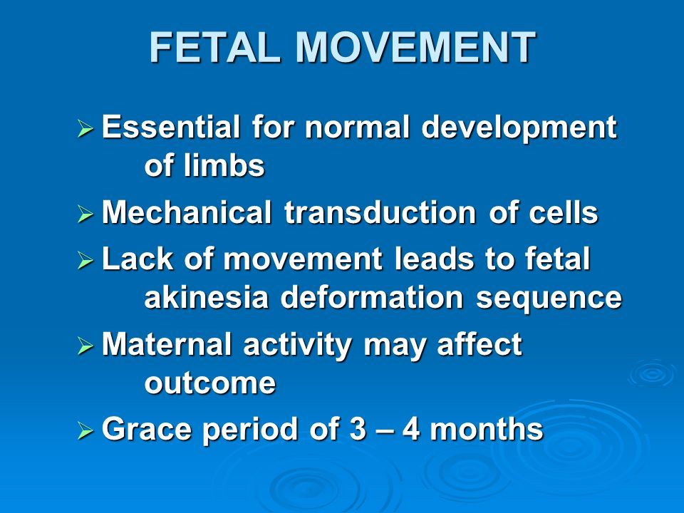 FETAL MOVEMENT Essential for normal development of limbs Essential for normal development of limbs Mechanical transduction of cells Mechanical transdu