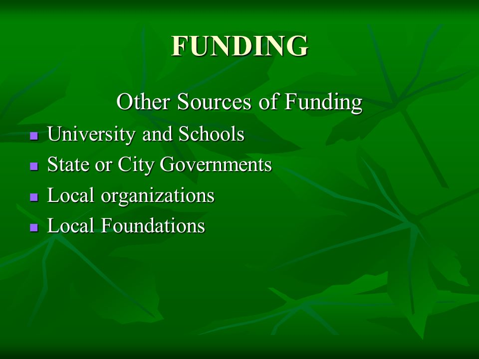 FUNDING Other Sources of Funding University and Schools University and Schools State or City Governments State or City Governments Local organizations Local organizations Local Foundations Local Foundations