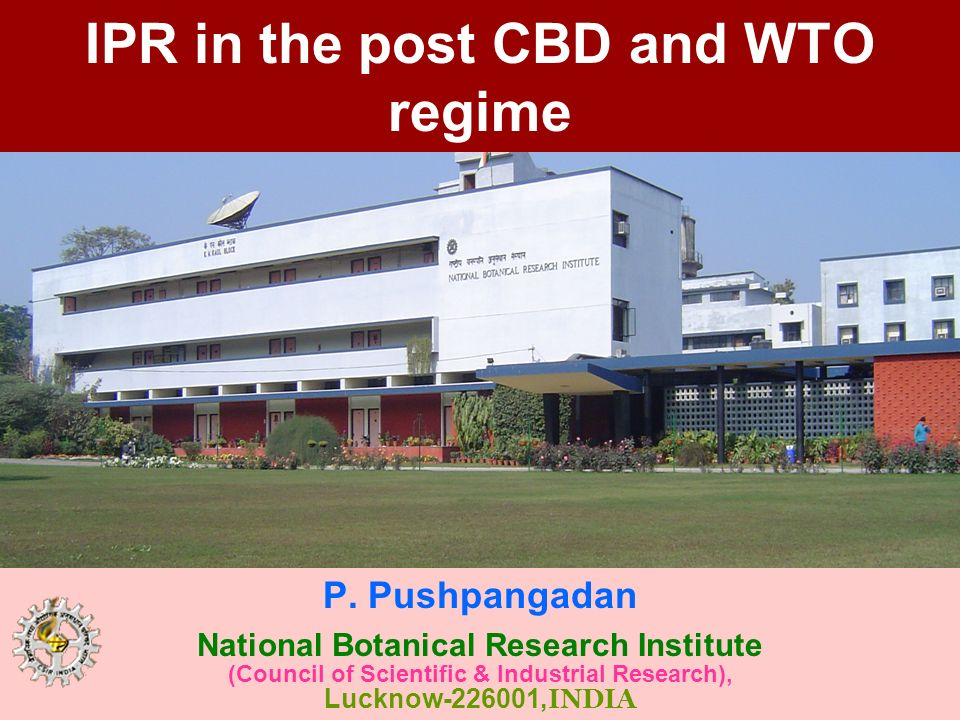 IPR in the post CBD and WTO regime P. Pushpangadan National Botanical Research Institute (Council of Scientific & Industrial Research), Lucknow-226001