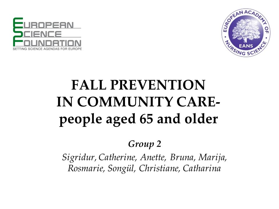Group 2 Sigridur, Catherine, Anette, Bruna, Marija, Rosmarie, Songül, Christiane, Catharina FALL PREVENTION IN COMMUNITY CARE- people aged 65 and older