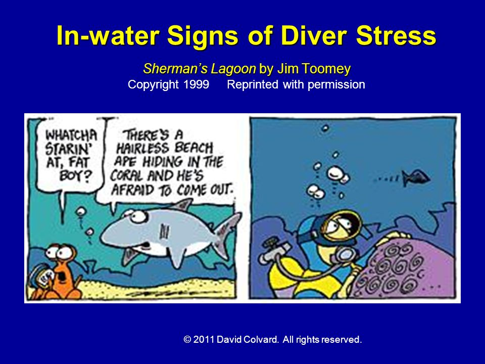© 2011 David Colvard. All rights reserved. In-water Signs of Diver Stress Shermans Lagoon by Jim Toomey In-water Signs of Diver Stress Shermans Lagoon