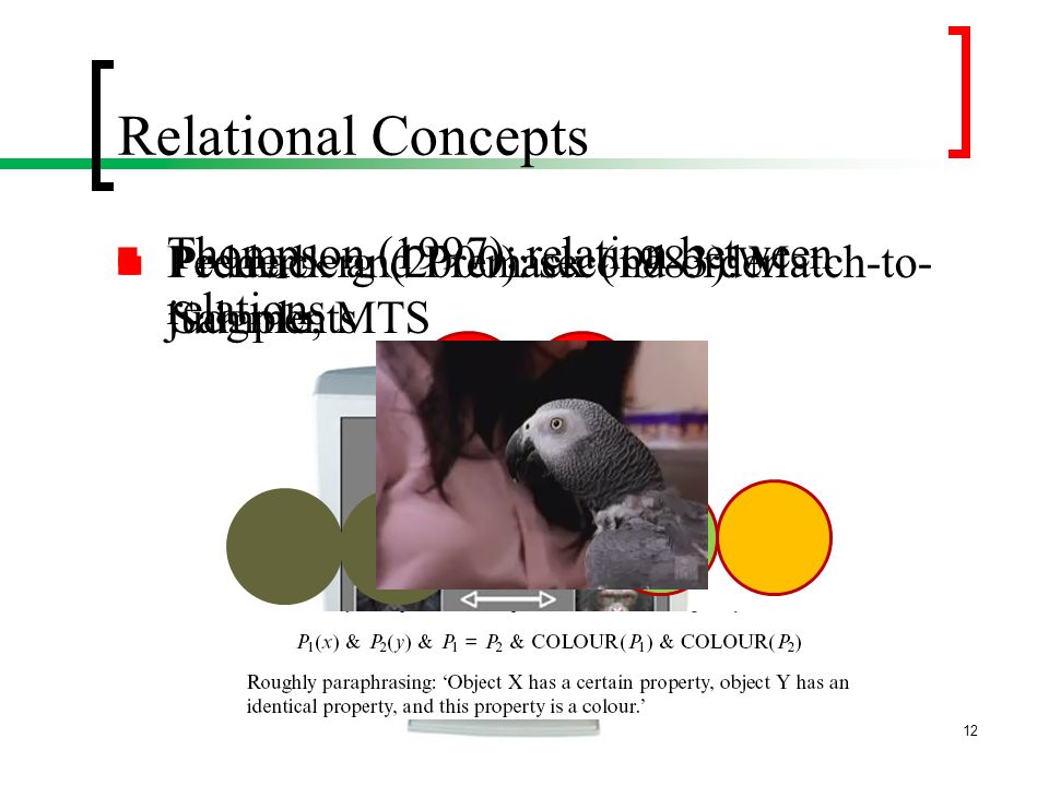 Relational Concepts Premack and Premack (1983): Match-to- Sample; MTS Thompson (1997): relation between relations Pedderberg (2000): second-order judg