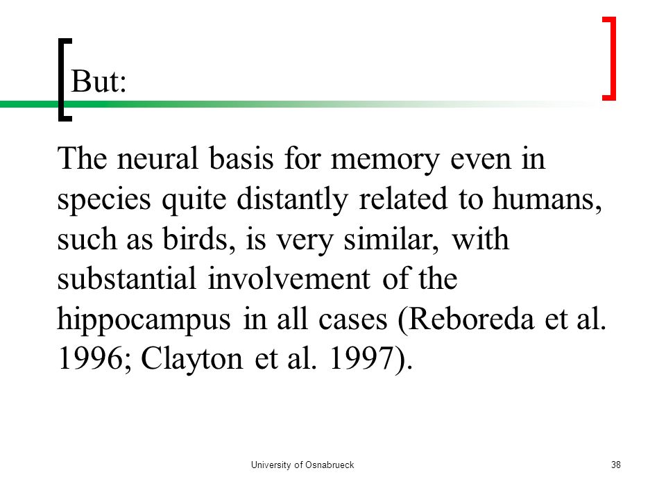 But: University of Osnabrueck38 The neural basis for memory even in species quite distantly related to humans, such as birds, is very similar, with su
