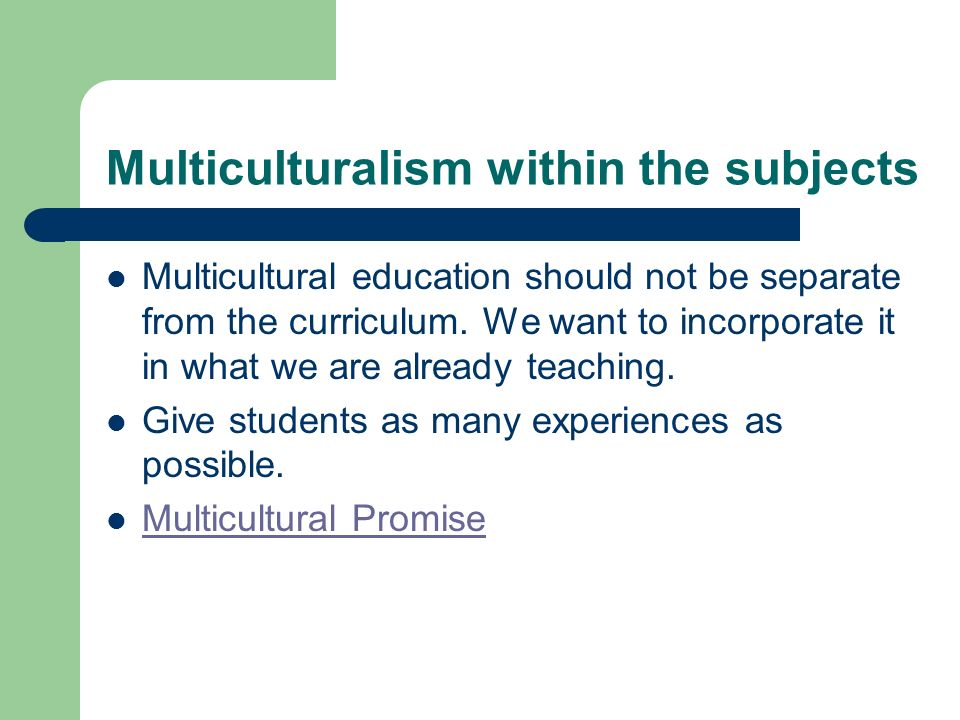 Multiculturalism within the subjects Multicultural education should not be separate from the curriculum.