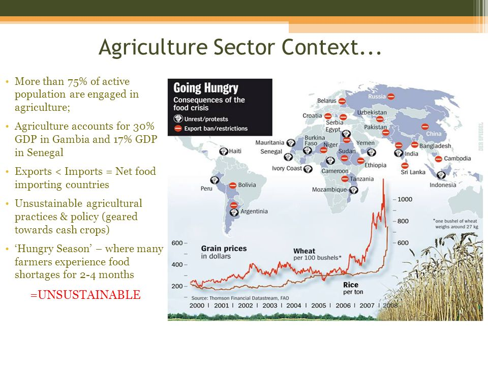 Food Insecurity Common Socio-economic challenges in rural areas of the Gambia & Senegal Limited education Lack of financial resources Limited access to land Chronic malnutrition Gender inequality Lack of sustainable resource management