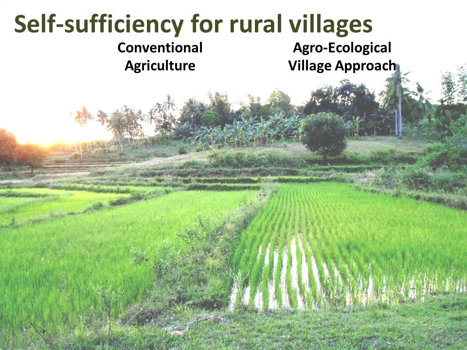Self-sufficiency for rural villages Conventional Agriculture Agro-Ecological Village Approach