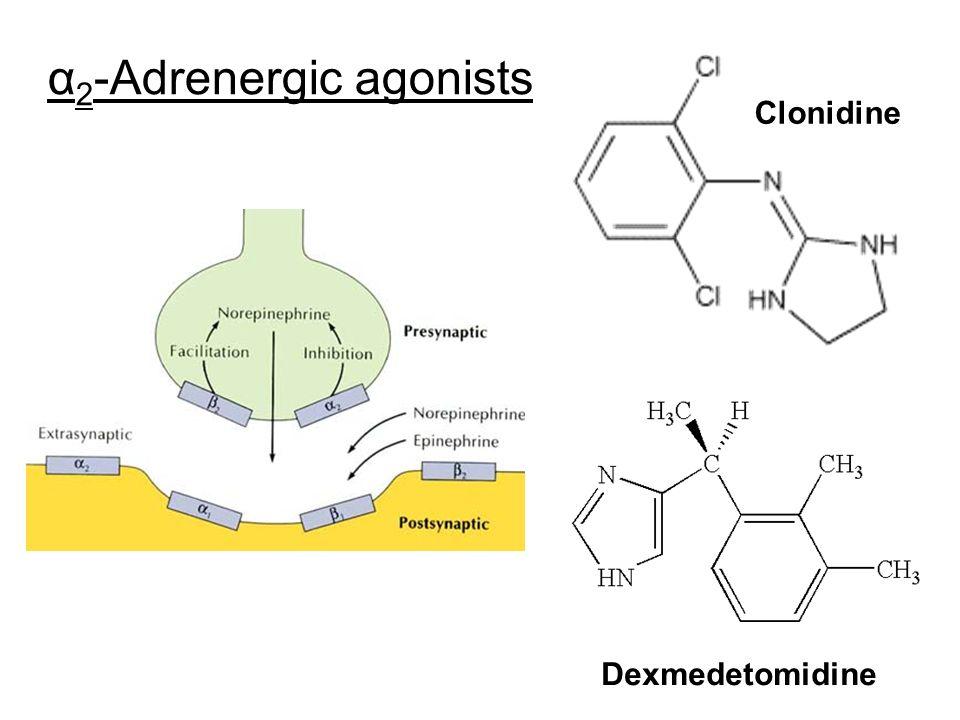 α 2 -Adrenergic agonists Clonidine Dexmedetomidine