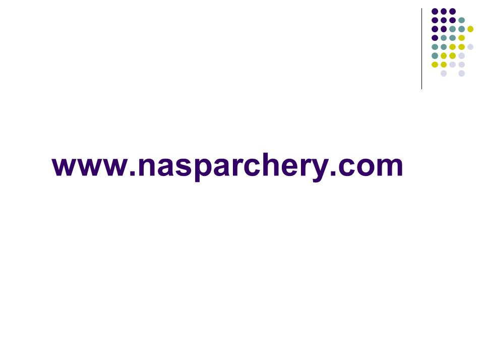 www.nasparchery.com