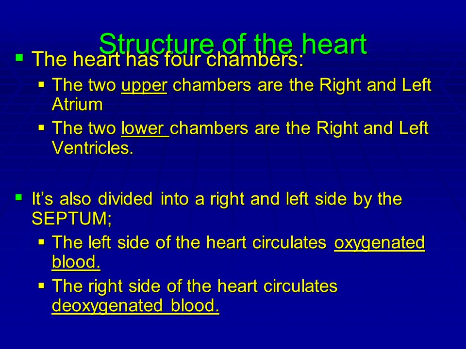 Structure of the heart The heart has four chambers: The heart has four chambers: The two upper chambers are the Right and Left Atrium The two upper ch