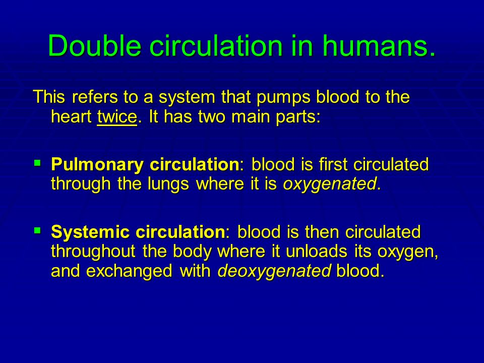 Double circulation in humans. This refers to a system that pumps blood to the heart twice. It has two main parts: Pulmonary circulation: blood is firs