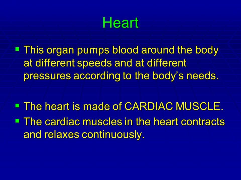 Animation of heartbeat.