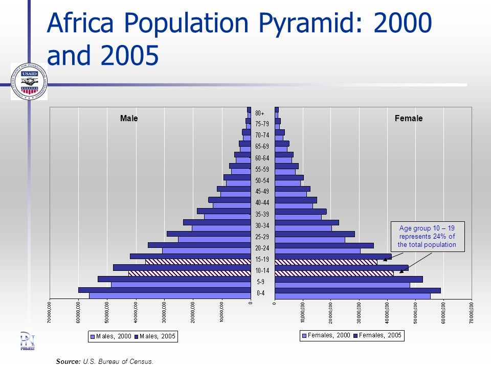 Africa Population Pyramid: 2000 and 2005 Source: U.S. Bureau of Census. Male Female Age group 10 – 19 represents 24% of the total population