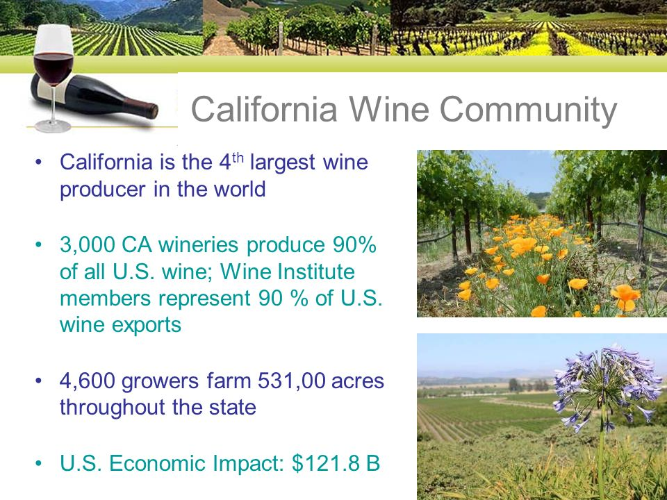 California Wine Community California is the 4 th largest wine producer in the world 3,000 CA wineries produce 90% of all U.S.
