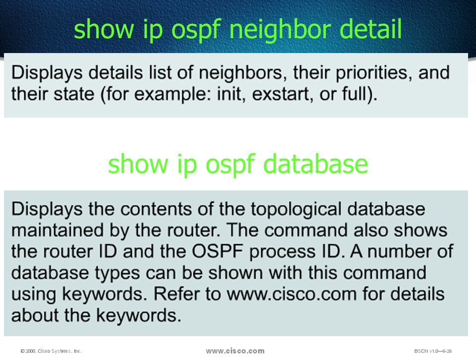 55 show ip ospf neighbor detail show ip ospf database