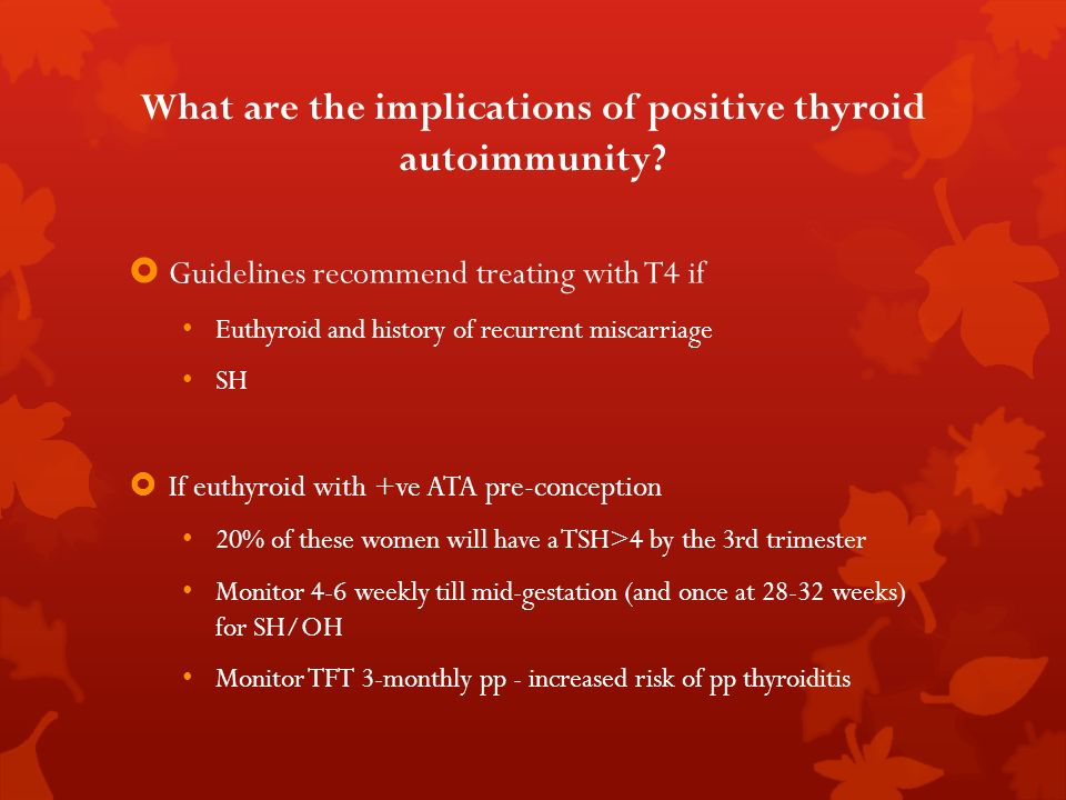 What are the implications of positive thyroid autoimmunity? Guidelines recommend treating with T4 if Euthyroid and history of recurrent miscarriage SH