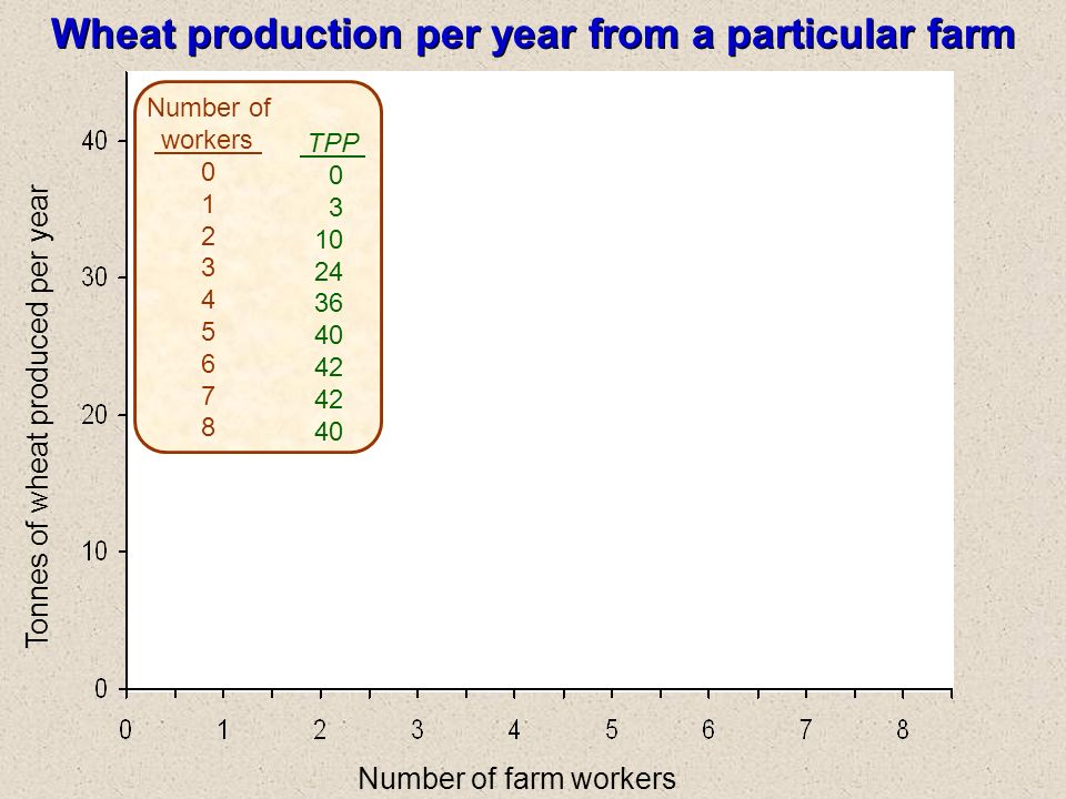 Number of farm workers Wheat production per year from a particular farm Tonnes of wheat produced per year Number of workers 0 1 2 3 4 5 6 7 8 TPP 0 3 10 24 36 40 42 40