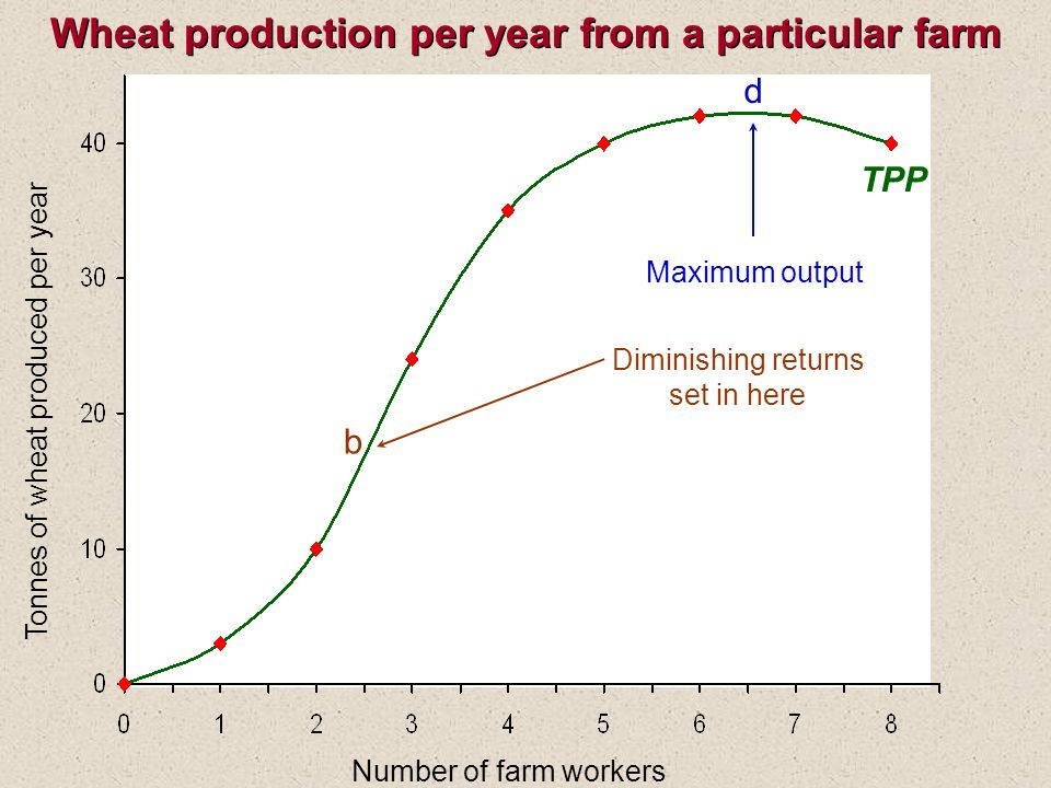 Wheat production per year from a particular farm Number of farm workers Tonnes of wheat produced per year TPP b Diminishing returns set in here d Maximum output