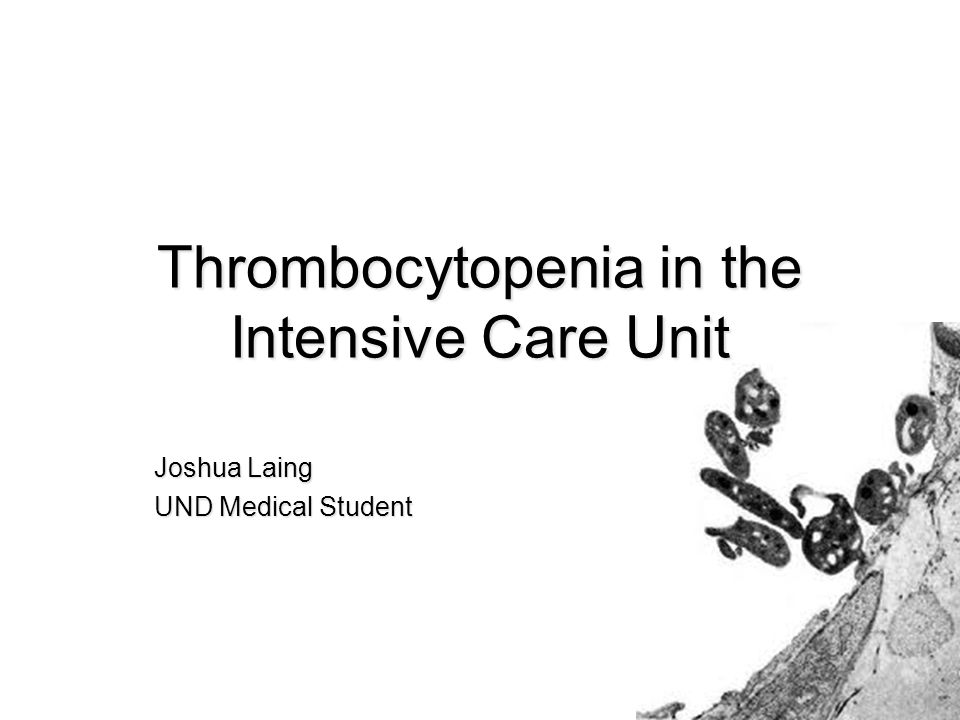 Thrombocytopenia in the Intensive Care Unit Joshua Laing UND Medical Student
